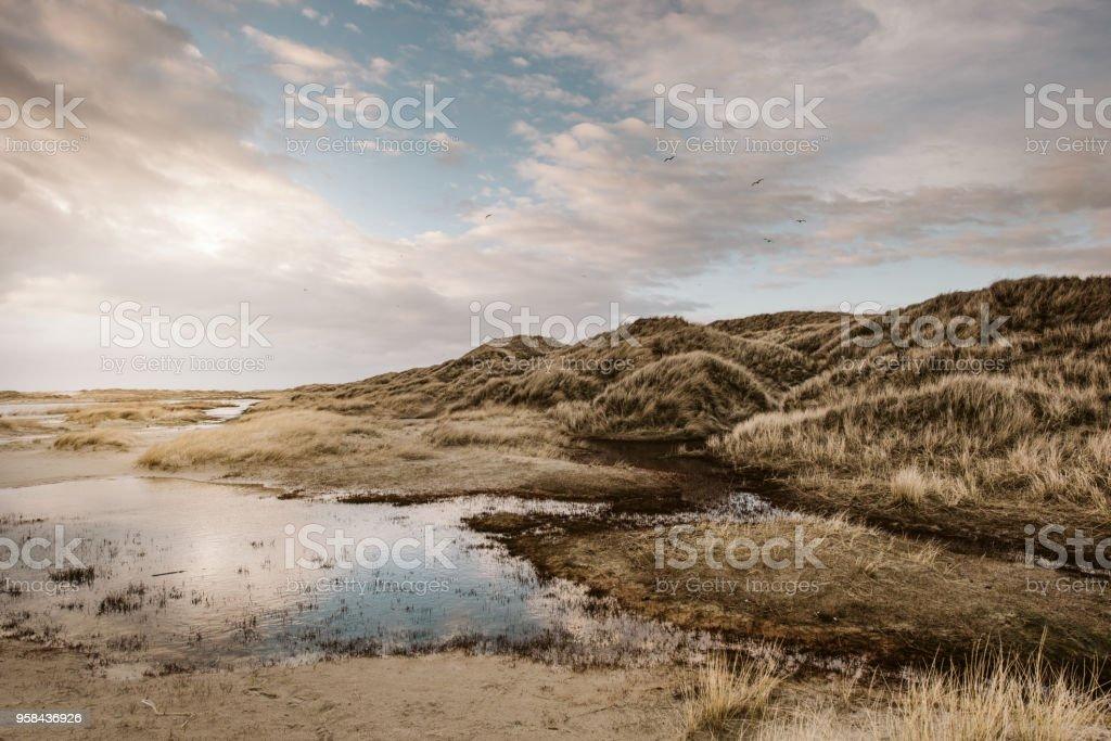 Küste Landschaft Insel Amrum – Foto