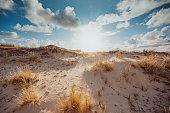 Coast Landscape Island of Sylt, Schleswig-Holstein, Germany