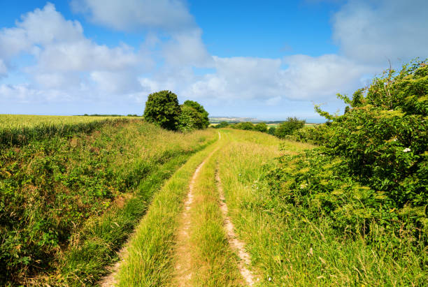 coast landscape near Calais hiking path in summer hauts de france stock pictures, royalty-free photos & images