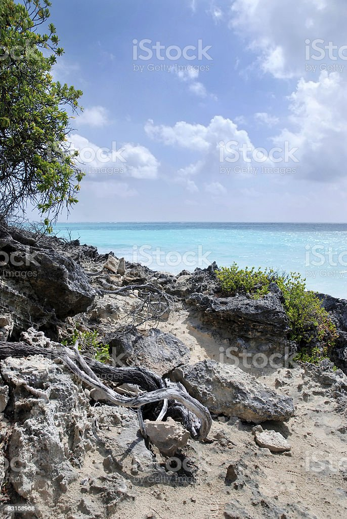 Coast Line in Mexico stock photo