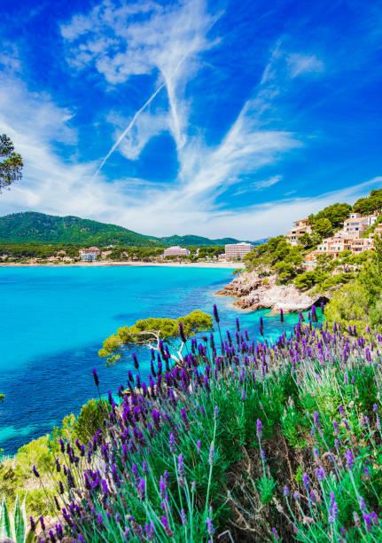 Côte de Canyamel Majorque Espagne, îles Baléares - Photo
