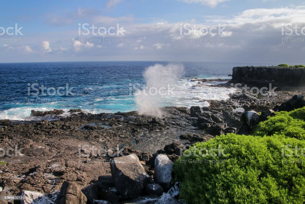 Coast of Espanola Island with blowholes, Galapagos National park, Ecuador. stock photo