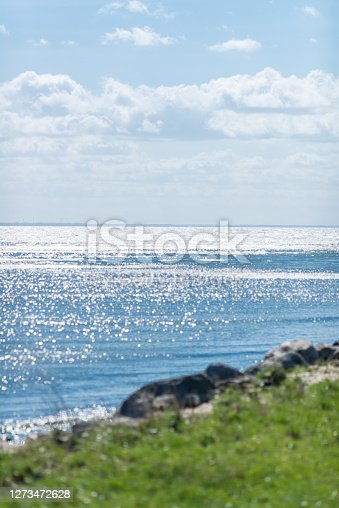 coast of the balic sea in backlit - selective focus