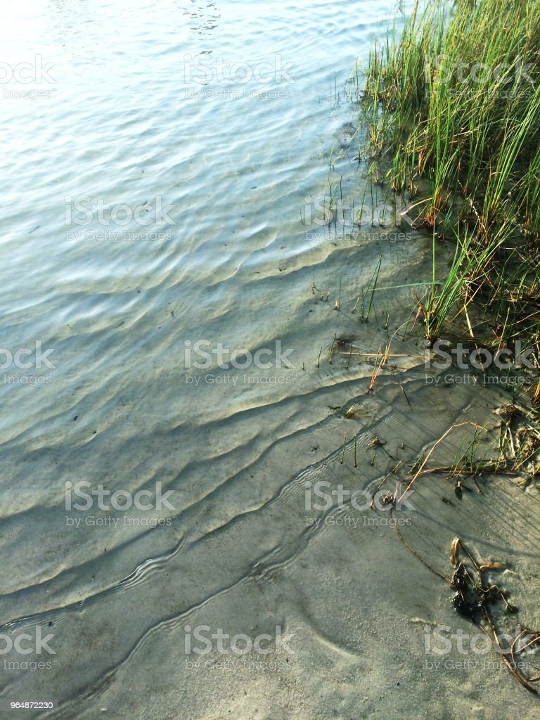 Coast of the lake with the wavy clean water and grass growing nearby. royalty-free stock photo