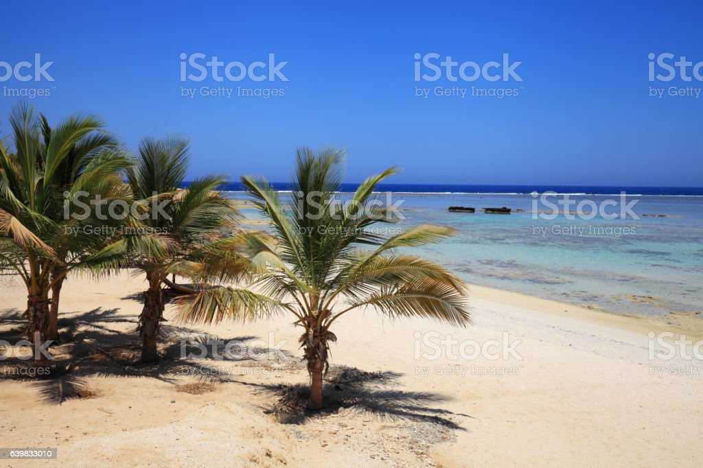 Coast of the red sea stock photo