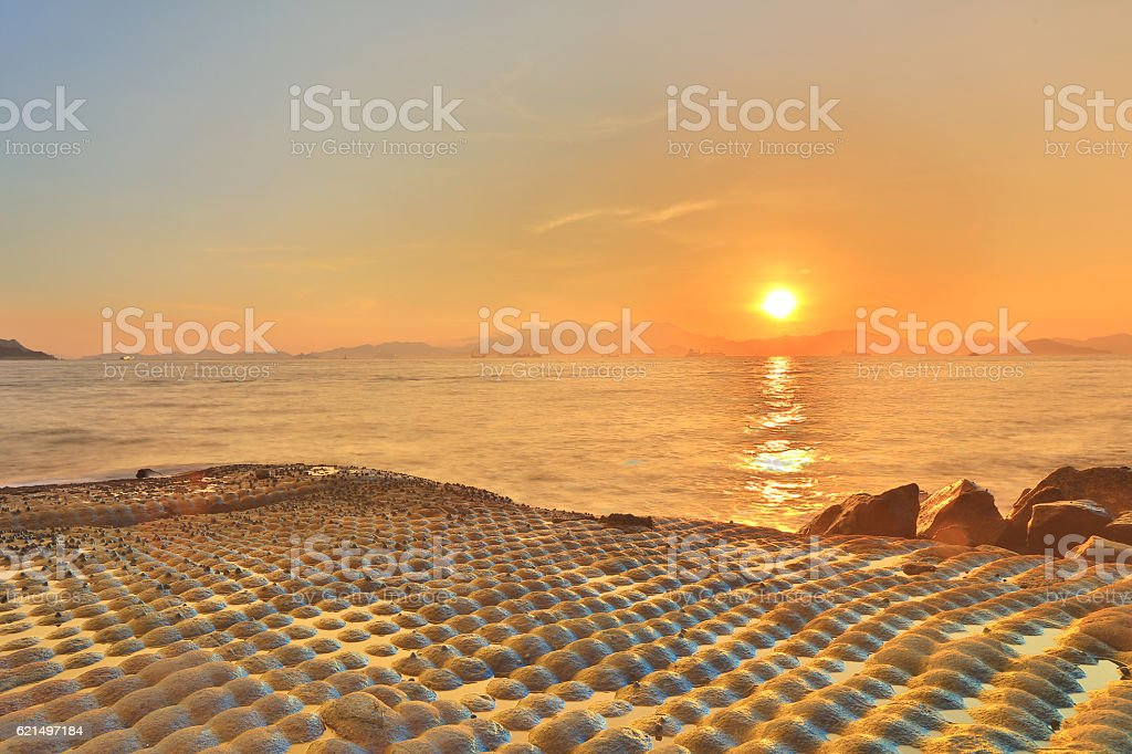 coast of wah fu Estate foto stock royalty-free