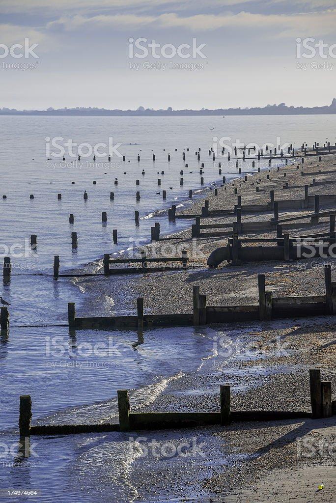 coast – zdjęcie