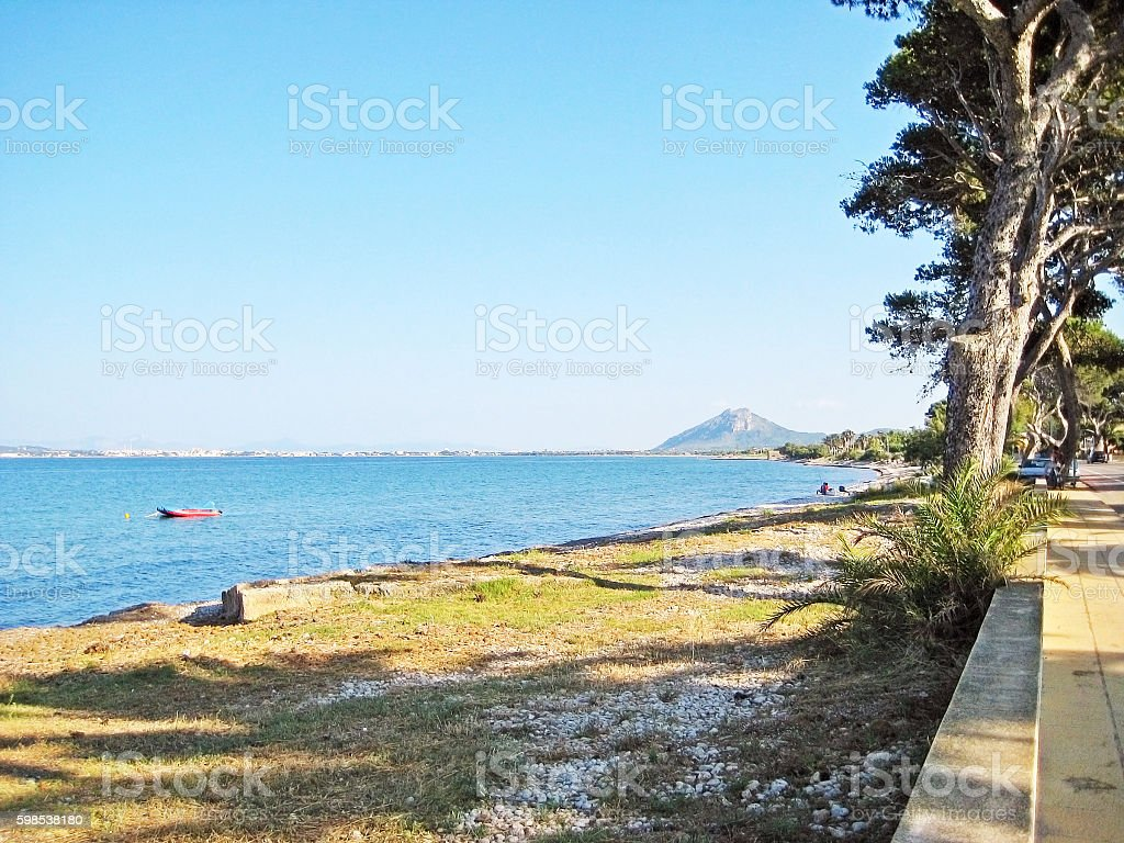 Coast with trees and beach between Alcudia and Pollenca, Majorca photo libre de droits