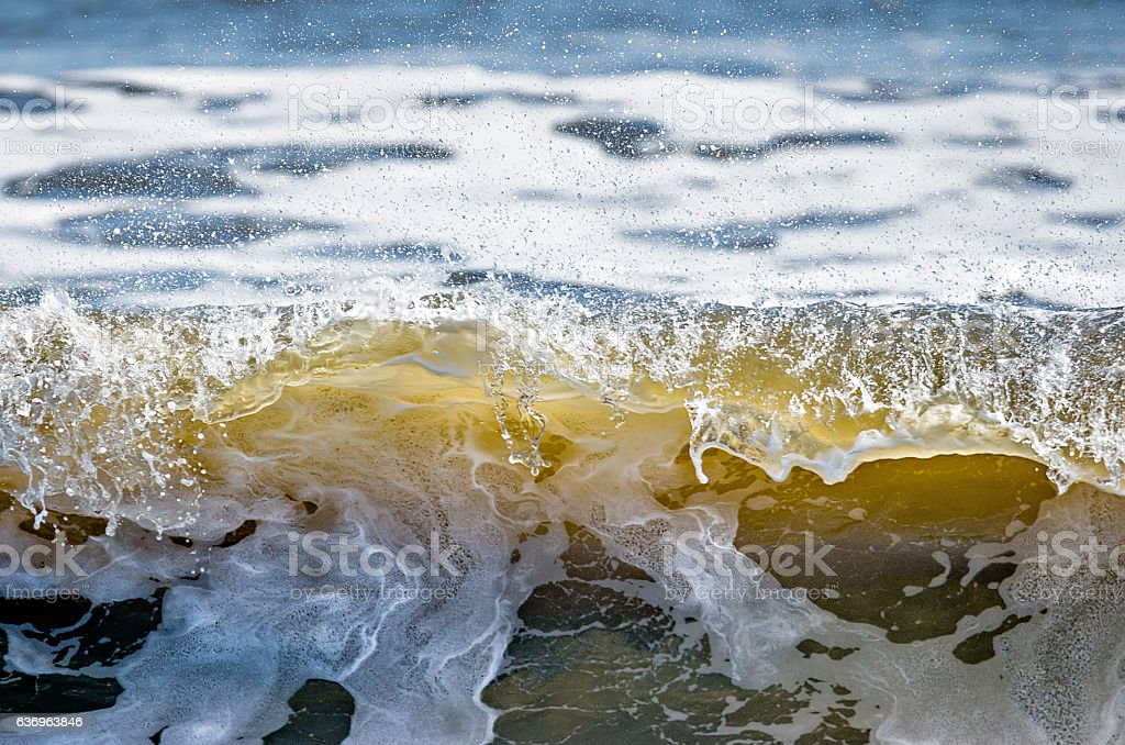 coastal beach scenes on kiawah island south carolina, stock photo