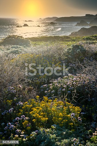 Seascape of northern California