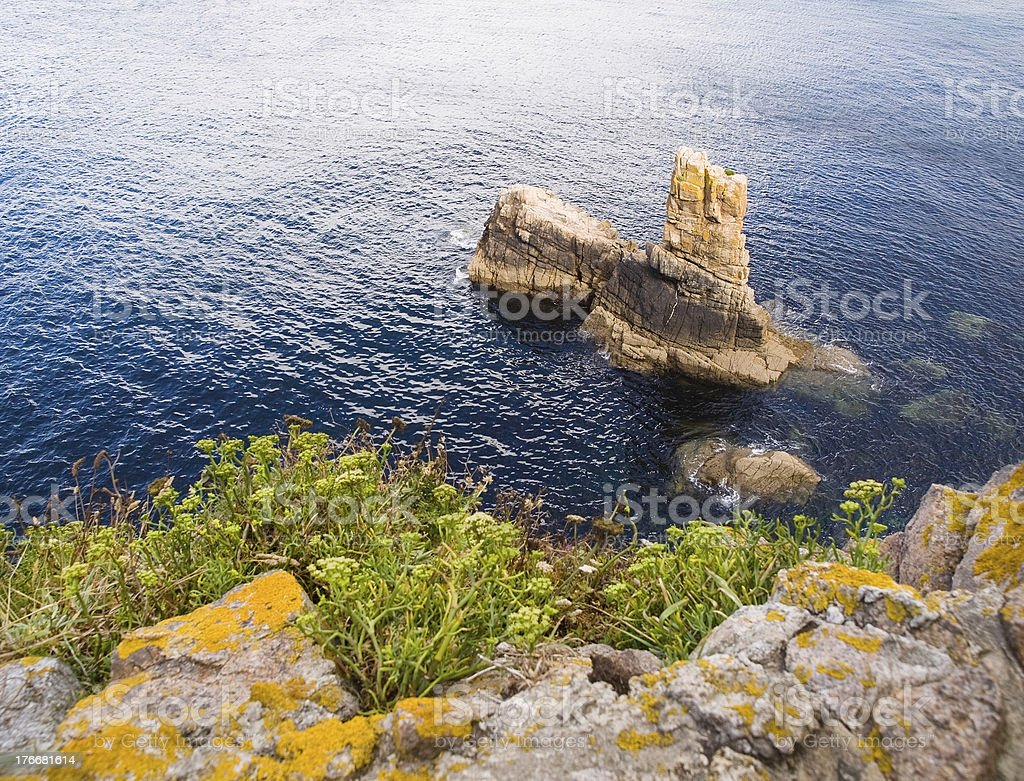 Coastal detail in Galicia, Spain. royalty-free stock photo