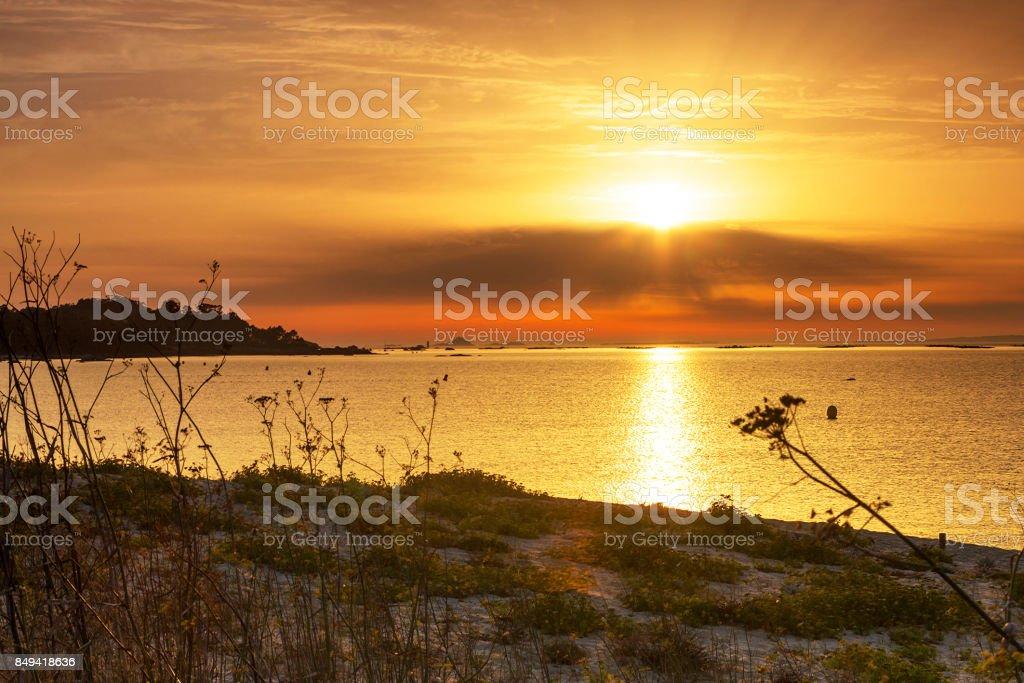 Coastal dune at sunset royalty-free stock photo