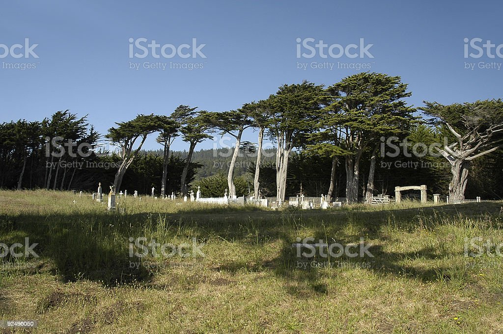 Coastal Graveyard royalty-free stock photo