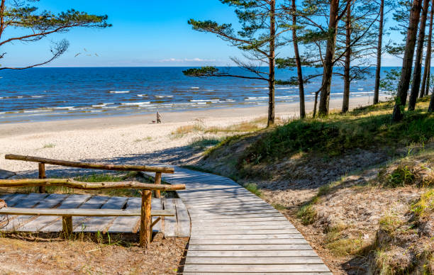 Coastal landscape at sunny day in Jurmala Jurmala is a famous international Baltic resort in Latvia latvia stock pictures, royalty-free photos & images