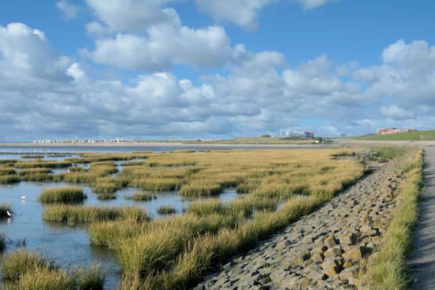 Küstenlandschaft in Norddeich, Ostfriesland, Nordsee, Deutschland – Foto