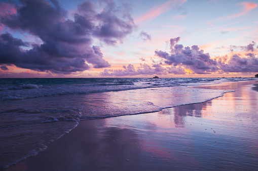 Coastal landscape in ultra violet tone. Atlantic Ocean coast, Bavaro beach, Hispaniola Island. Dominican Republic