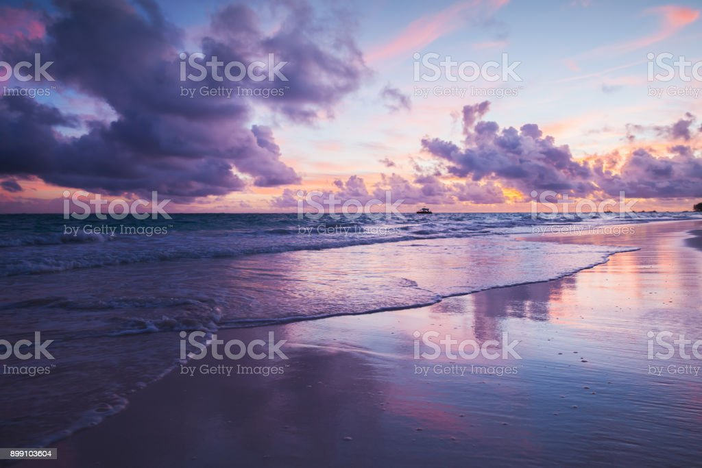 Coastal landscape in ultra violet tone stock photo