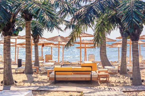 kust landschap-uitzicht op het strand parasols en ligstoelen - bulgarije stockfoto's en -beelden