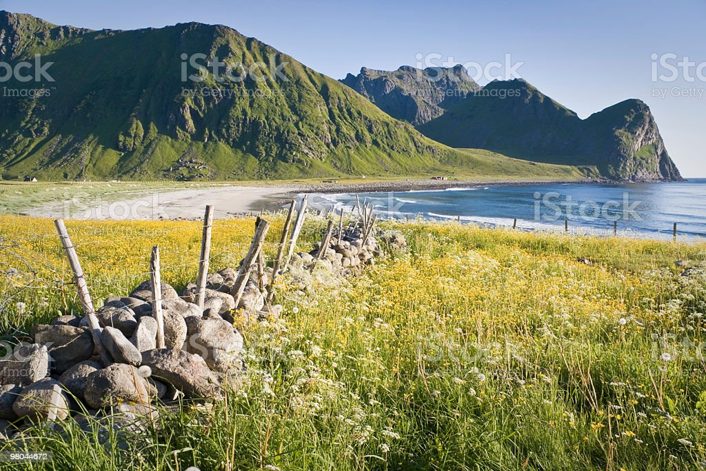 Coastal landscape with the sea and mountains in Lofoten royalty-free stock photo
