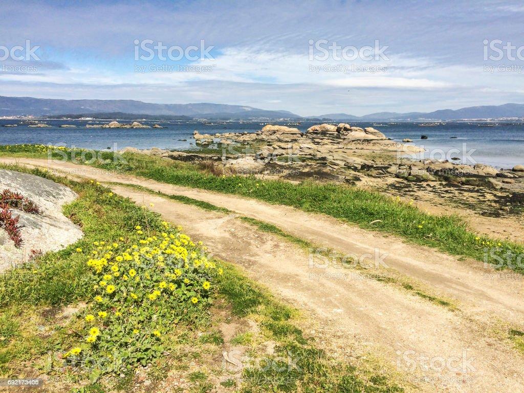 Coastal path at spring royalty-free stock photo