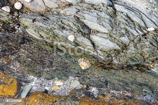 Coastal rocks on the beach at Portwrinkle, Devon, UK