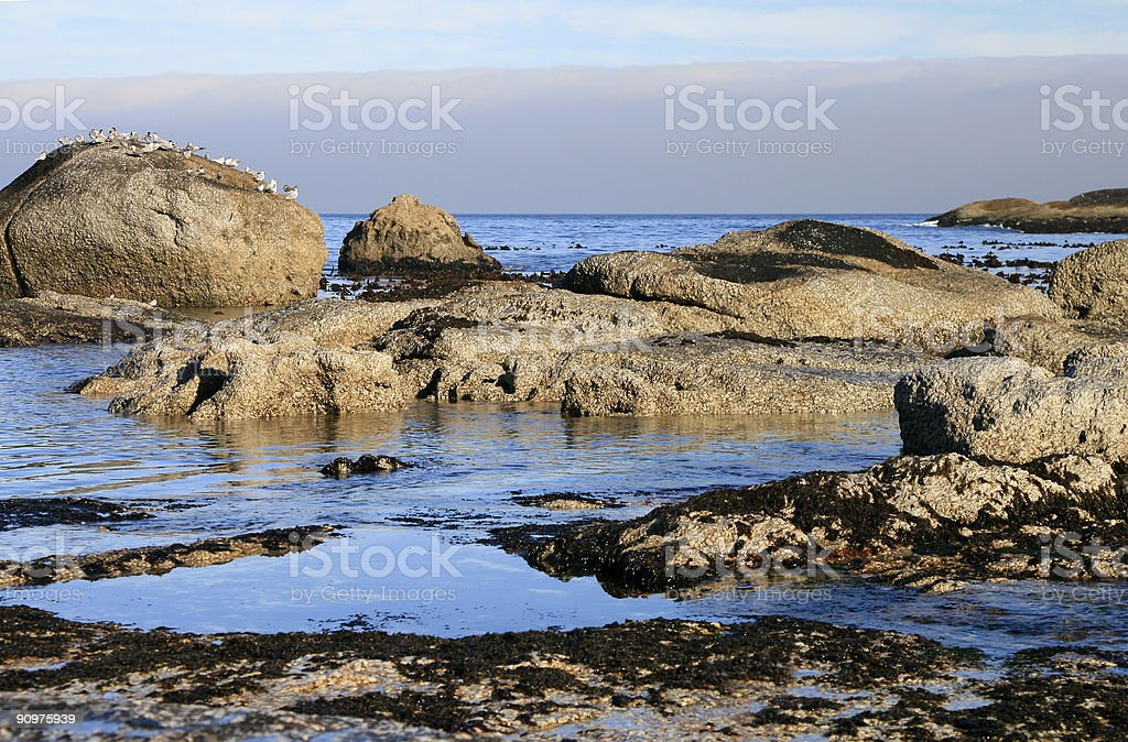 Coastal scenery in South Africa royalty-free stock photo