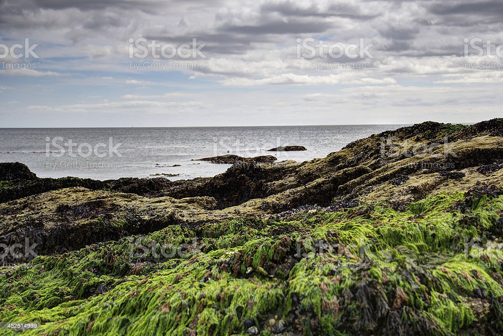 Coastal Shot HDR Detailed image stock photo