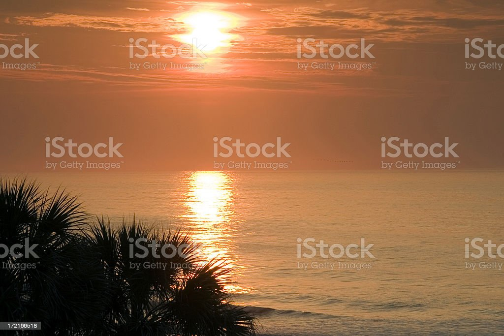 Coastal Sunrise #3 royalty-free stock photo