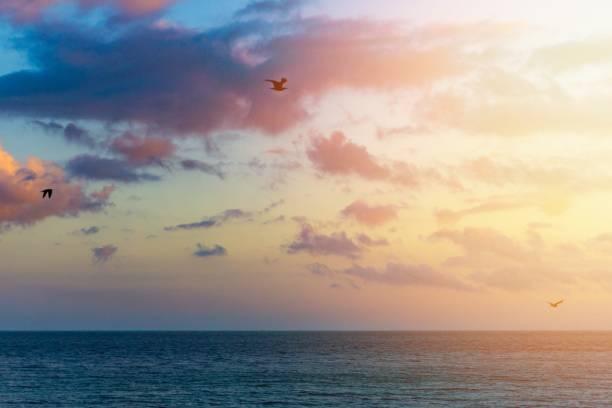 Coastal Sonnenuntergang an der Algarve, Portugal – Foto