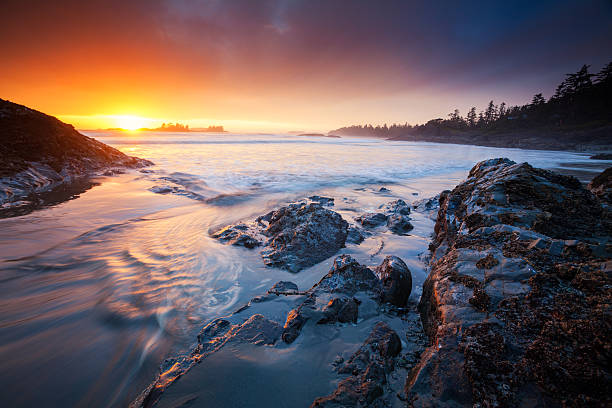 Coastal Sunset A magnificant setting sun over the coastline of Tofino, British Columbia. vancouver island stock pictures, royalty-free photos & images