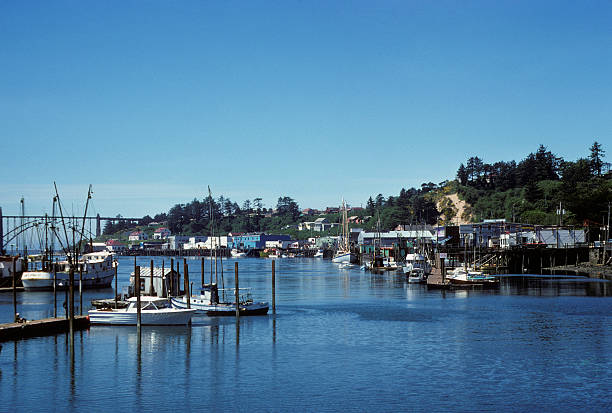 coastal town and bay, Pacific Northwest, circa 1975 Pacific Northwest bay with various ships docked at wharves. hearkencreative stock pictures, royalty-free photos & images
