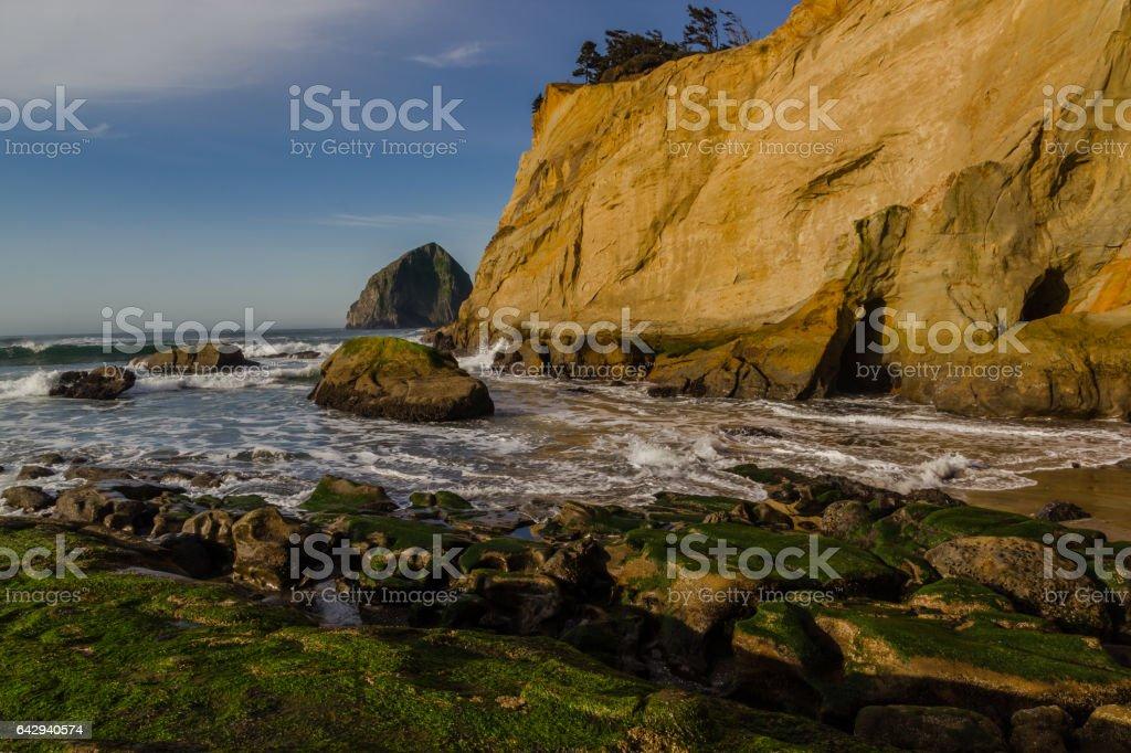 Coastal Wonder stock photo