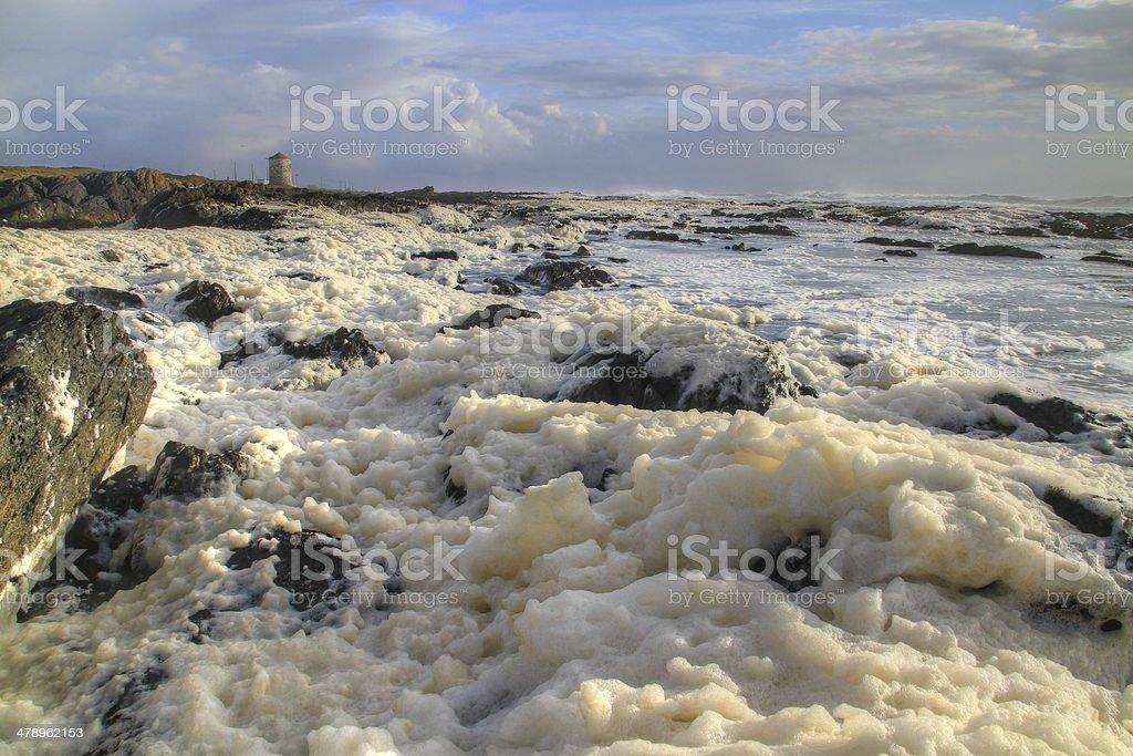 Coastline covered with sea foam stock photo