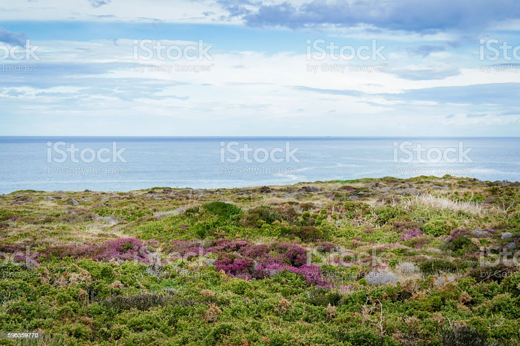 Coastline in Asturias, Spain royalty-free stock photo