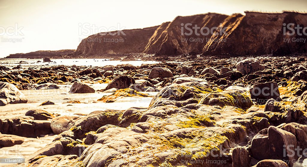 Coastline in Ireland at Sunset stock photo