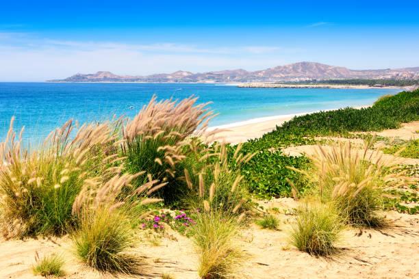Küste Mexiko – Foto
