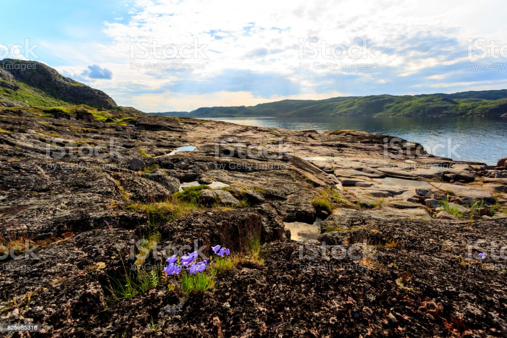 Coastline of Barents sea, Arctic ocean, Kola Peninsula, Russia stock photo