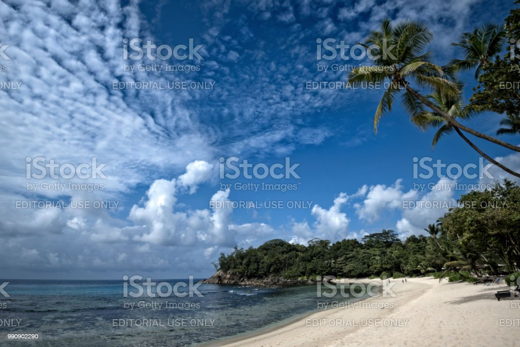 Coastline of Seychelles with curved palm trees kissing the deep blue Mackerel sky stock photo