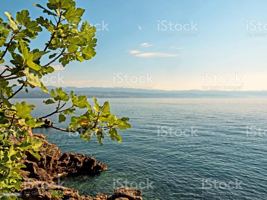 Coastline of the Kvarner Bay in Croatia stock photo