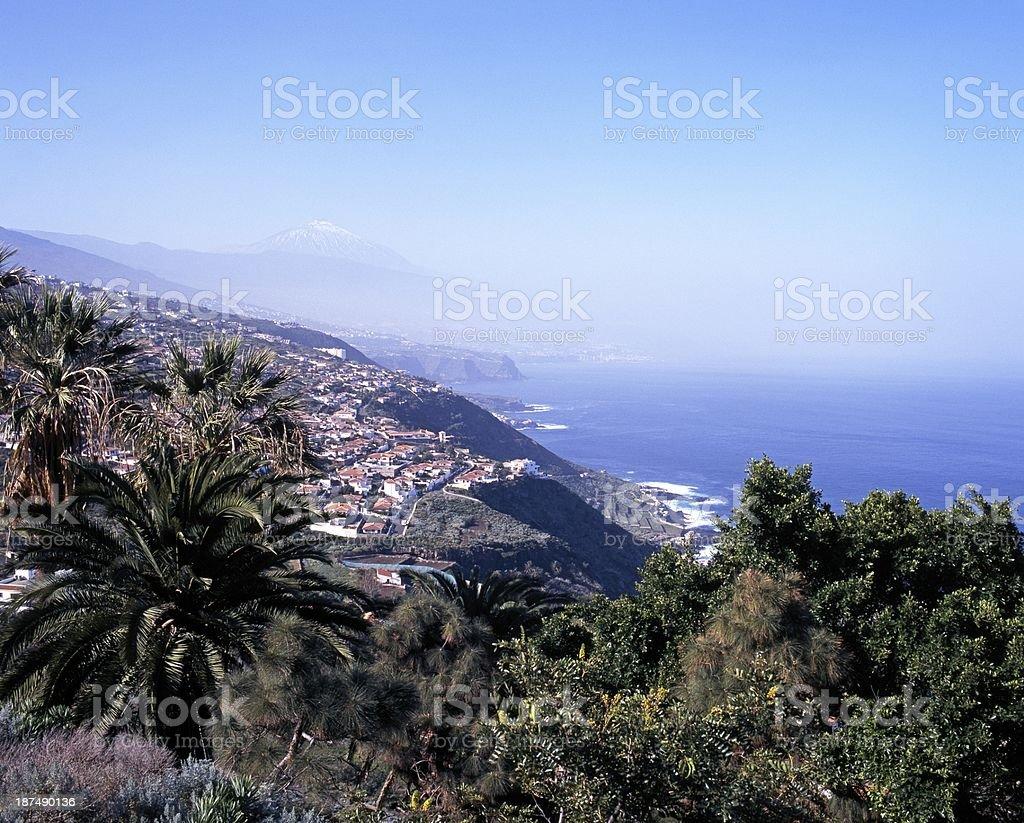 Coastline, Puerto de la Cruz, Tenerife. stock photo