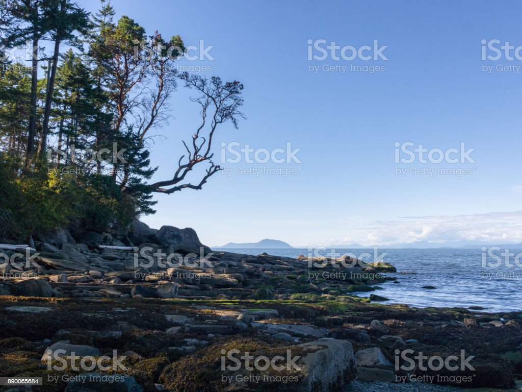 coastline scenic view from Gabriola Island, BC stock photo