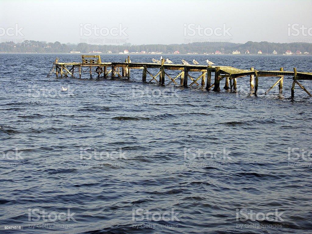 Coastline Seagulls royalty-free stock photo