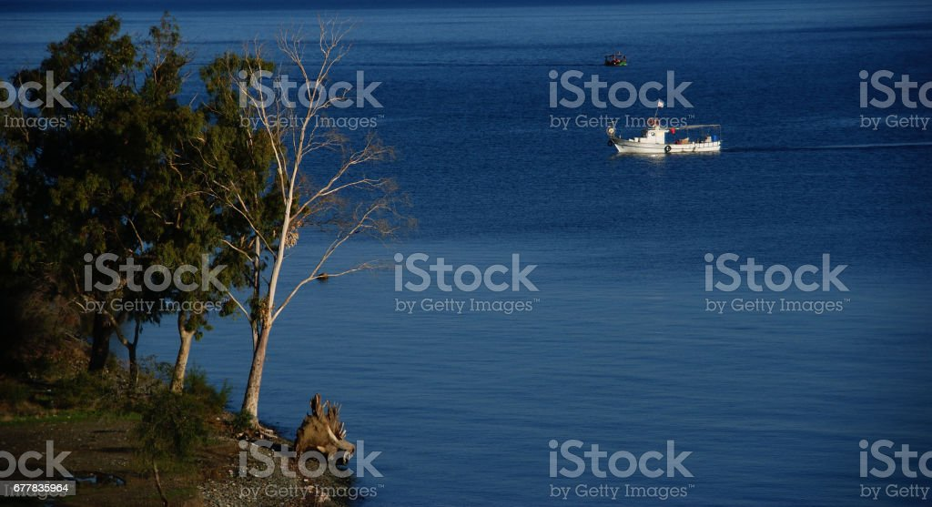 coastline , several trees and a fishing boat while sun is rising up royalty-free stock photo