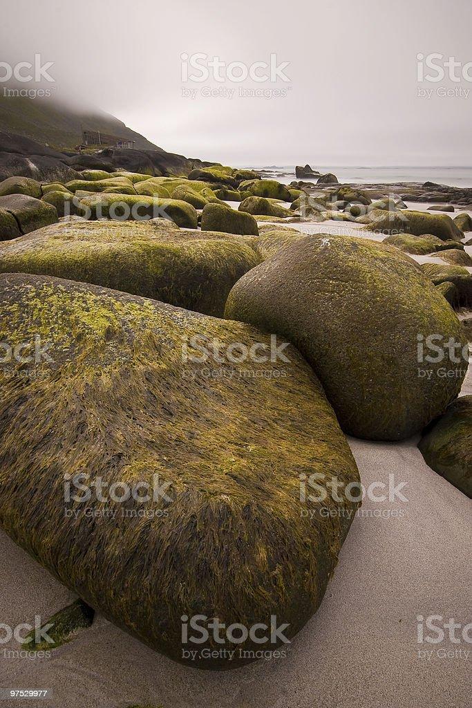coasts scene on the lofoten royalty-free stock photo