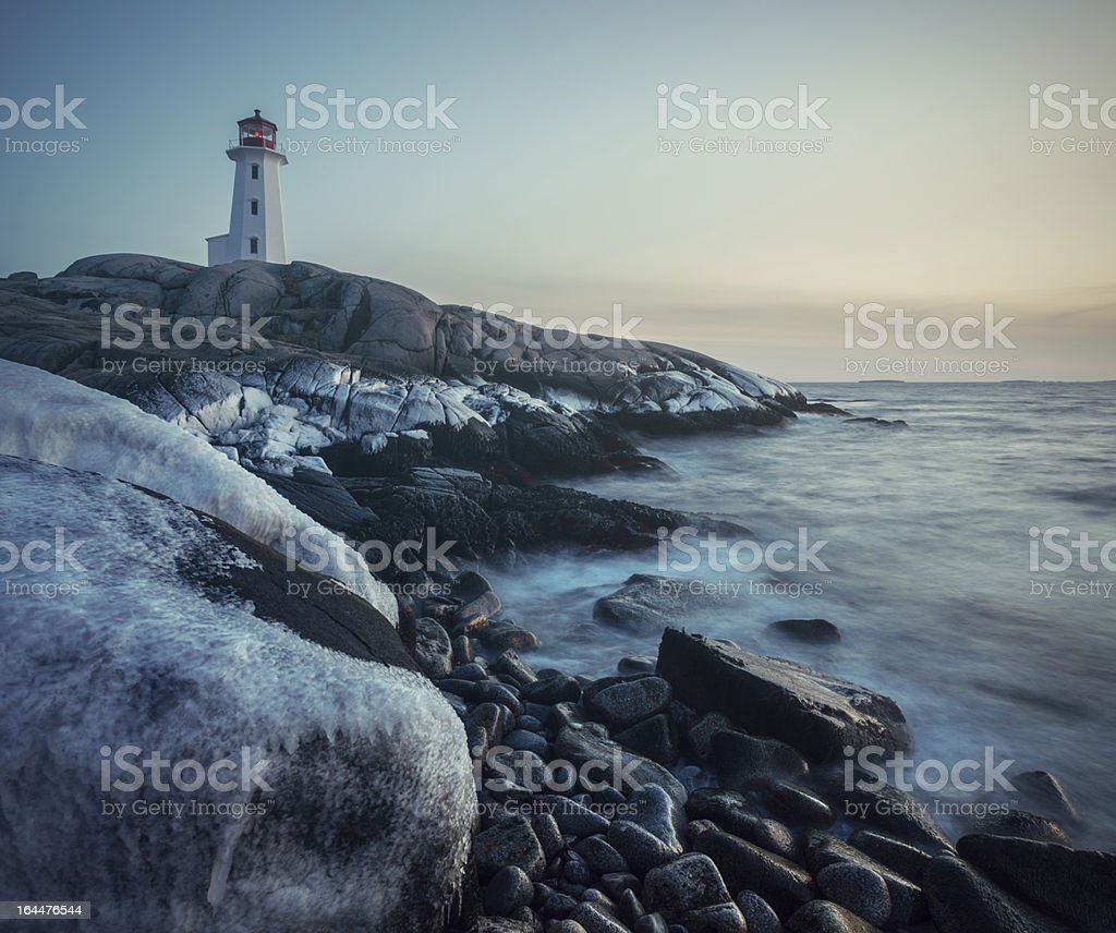 Coated in Winter royalty-free stock photo