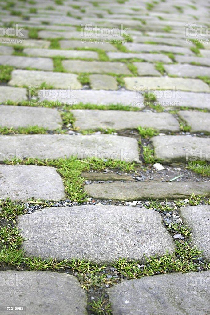 Cobble Stones royalty-free stock photo