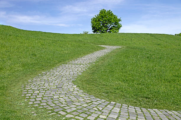 cobbled stone path with lonely tree on a slope stock photo