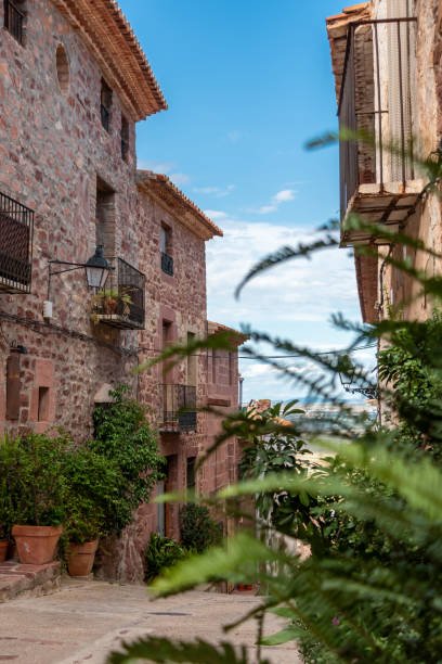 Cobbled street with stone houses with plants in the foreground and blue sky in the medieval town of Vilafamés in Castellón (Spain) stock photo