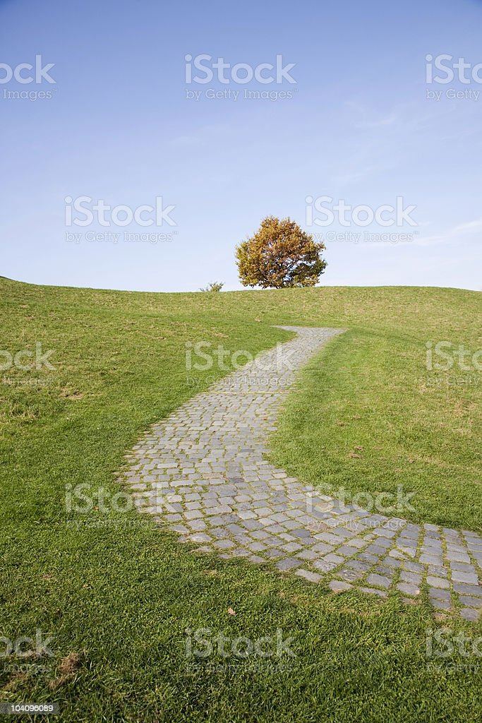 cobblestone footpath uphill to an autumn tree royalty-free stock photo