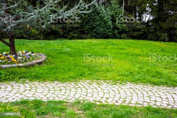 Photo of Cobblestone garden path
